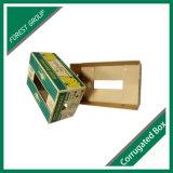 波形のバナナの紙箱の包装