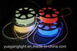 Ce & свет веревочки RoHS Approved 10m 24LED/M для напольной пользы