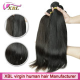 Virgin Human Remy Indian Mink Hair for Hair Distributor