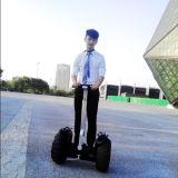 Uno mismo que balancea la vespa eléctrica barata del transportador dos del carro eléctrico personal de la rueda para los adultos