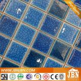 Mosaïque de porcelaine de salle de bains et de mur et d'étage de piscine (C648062)