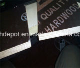 Pappel-Schwarzes und Brown-Film stellten das Furnierholz gegenüber, das Marinefurnierholz Shuttering ist