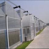 Invernadero fuerte de la agricultura de la película plástica del palmo multi