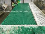 Grating da passagem de GRP/FRP/Grating moldado costume da fibra de vidro Gratings/FRP