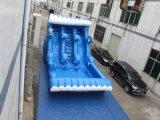 Aufblasbares Delphin-Plättchen mit Pool