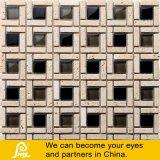 حارّ عمليّة بيع [8مّ] حجارة مزيج مربع فسيفساء لأنّ جدار زخرفة (قالب مزيج [ب04/ب05/ب06/ب07/ب08])