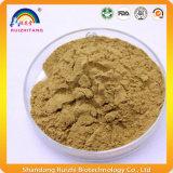Polvere organica dell'estratto del tè verde