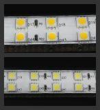 110V/220V riga chiara di tensione 5050 LED doppia con IP67