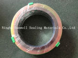 Outer Ring (SUNWELL - SW600)를 가진 나선형 Wound Gasket