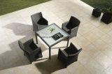 대중적인 디자인 차리는 싼 가격 호텔 가구 정원 의자 & 테이블 (YTD020-1)