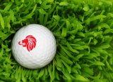 Varios sellos de la pelota de golf de los modelos