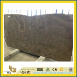 Obama Wood/Канада Coffee/Brown Wooden Marble Slabs для Floor Covering/Interior Decoration