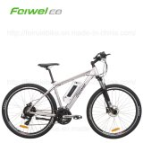 "29 "" 350W Mountain Electric Bike (TDB09Z)"