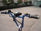 カスタム平面Trike (VS-T305)