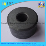 China Ferrit-Magnet Customized Magnetisierungsrichtung