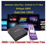 HD Android Dream arabo Box con l'arabo Channels di Famous