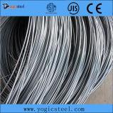 Vergella d'acciaio (ASTM 201, 302, 304, 420) dell'acciaio inossidabile degli ss