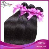 8A Silk brasileiro Stright Cheap Vigin Remy Human Hair Weft