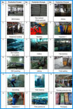 Campo da giuoco esterno del parco di divertimenti del gioco dei bambini dell'oscillazione al suolo della Cina impostato (YL-QQ011)