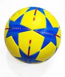 2016 [إيوروبن] بطل تدريب كرة قدم