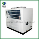 Casella-Type professionale Low Temperature Industrial Water Chiller di Air Cooled