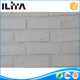 Белые классицистические тонкие плитки кирпича, кирпич стены плакирования стены (YLD-18029)