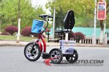 Foldable Zappy 3つの車輪の電気スクーター