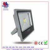 30W COB LED FloodかProject Light/Lamp