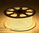 Indicatore luminoso di striscia flessibile della decorazione LED del giardino di illuminazione di festival