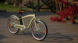 250Wは安く安い道の自転車電気バイクの電気バイクエンジンを搭載する絶食する