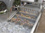 Lavatrice di pulizia della frutta o della verdura