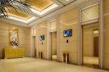 Elevatore domestico con buona qualità e Nizza lo sguardo