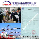Transporte da carga do mar de FCL/LCL de China a Áustria