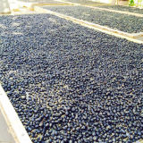 Frutta nera cinese organica di Goji Wolfberry della nespola
