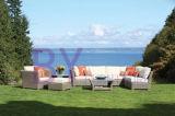muebles al aire libre del jardín by-473 de la rota de las porciones grandes de mimbre de lujo del sofá