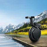جديدة 17 بوصة درّاجة ناريّة كهربائيّة مع [1000و] محرك