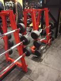 Strumentazione domestica di ginnastica di Crossfit di Dumbbell di gomma per il sollevamento di peso
