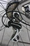 250W 36V Spokewheels 모터 알루미늄 프레임 산 전기 자전거 (JSL037G-1)