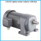 Stabiele Aangepaste Motor voor Voedsel & Industrie van Dranken