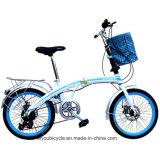 高品質20インチの小型小型の折るバイク(ly77)