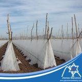 Tela no tejida ambiental de los PP con ULTRAVIOLETA tratada para la agricultura