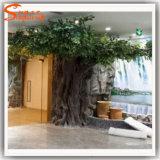 Albero di Banyan di plastica falso artificiale del Ficus del rifornimento della Cina