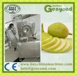 Machine de découpage en tranches de poire à vendre en Chine