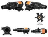 12V/24V bombas de água Waste marinhas da C.C. Macerator