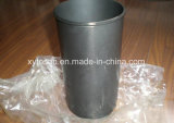 Mazda Wl HA Xa SL TF TM RF R2 (OEM SE01-23-051, 1363-23-051, 1363-23-051)를 위한 실린더 강선