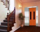 Elevatore domestico qualificato della villa