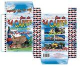 Os franceses avistam considerar os cartões de jogo de papel do póquer