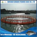 Venda flutuante de gaiola de peixe de PEAD no mercado de peixe