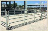 Galvanizzato intorno alla recinzione provvisoria del Corral della rete fissa del bestiame della guida
