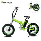 bici eléctrica gorda del neumático grande de la rueda del mag 20inch, bici eléctrica de la nieve del marco de la aleación para la venta
